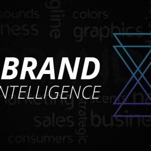 Brand Intelligence